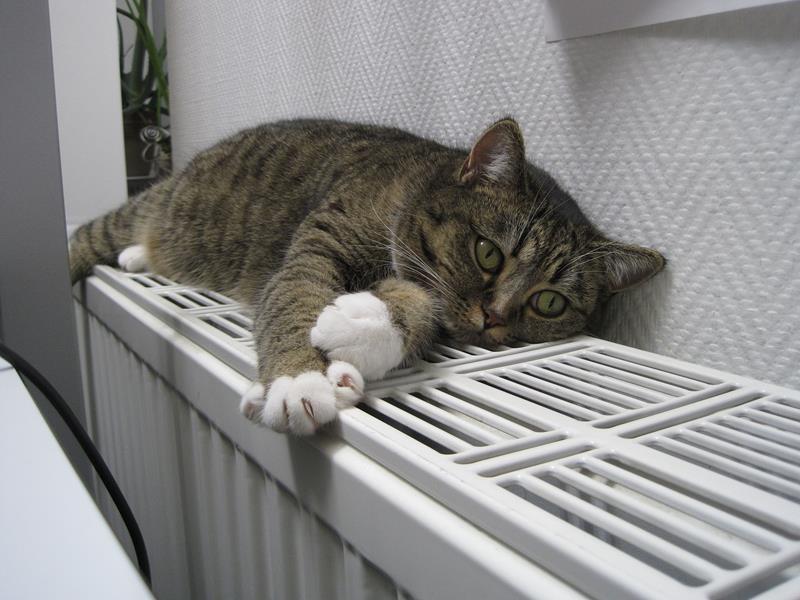 CV centrale verwarming bij BCV installatietechniek